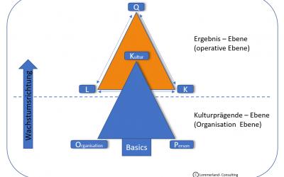 Einfluss der Firmenkultur auf die Output-Kennzahlen (KPI's)